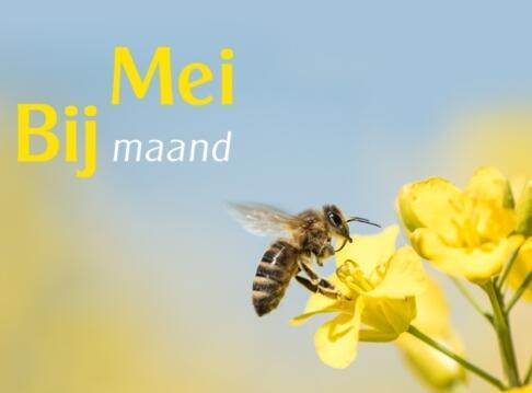 Meimaand Bijmaand Odin:  Meer bijen voor meer biodiversiteit